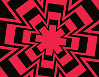 Red Hot Chili Peppers Limited Edition Poster