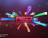 Red Institute, Identity