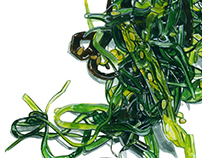 FOOD_WAKAME