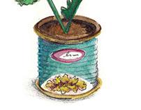Sembrando- Plant.