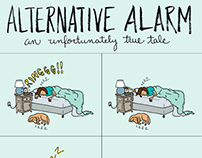 Alternative Alarm
