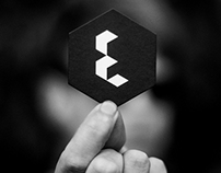 Elevate Management Branding