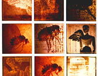 3X4 Polaroid mosaic