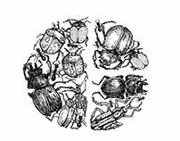MILKA FONT- Insects,  Ποσειδών, Жабок