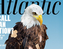 The Atlantic Eagle Cover