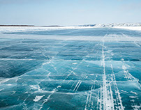 Arctic Shades