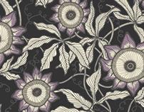 Passiflora variations