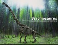 Brachiosaurus Skeleton. making