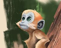 Francois' Leaf Monkey