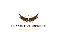 Praxis Enterprises - Logo & Business Card Design