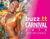 buzz.tt Carnival 2013 Editor's Choice