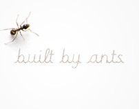 Built By Ants Font