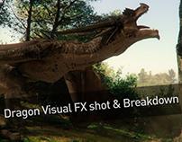 Dragon Visual FX shot & Breakdown