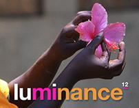 Luminance 12 Responsive Website