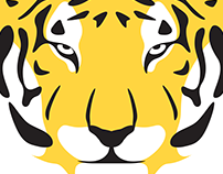 Tiger J Taekwondo