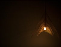 MISS LIGHT