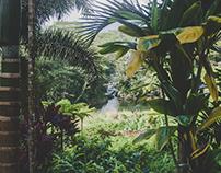Kauai: Spiritual Nature