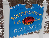 Southborough Town Forest