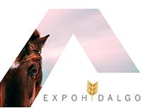 Expo Agro Hidalgo