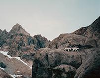 Cascadia I