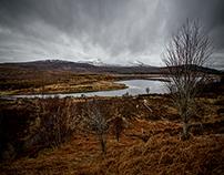 Achnashellach :: Field of the Willows