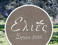 Olivenernte auf Kreta