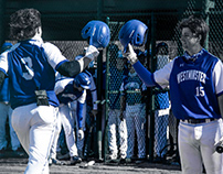 "Westminster Baseball ""Up On Deck"""