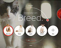 Royal Canin Microsite Pitch