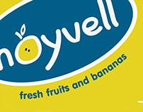 Noywell – Brand Identity
