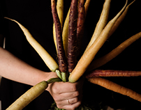 Carrot and stick