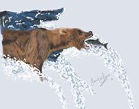 Bear: Illustration