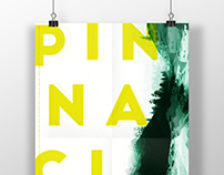 Event Poster / Pinnacle
