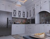 Kitchen Interior Desgin