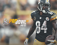 Pittsburgh Steelers Pro Bowl Promotion