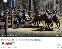 Live Oak International Chester Weber Combined Driving
