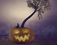 Hocus Phocus: Pumpkin