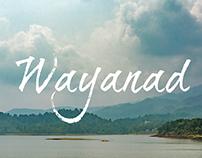 Wayanad | Kerala | India | Landscape
