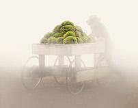 Nature Merchant (2014)