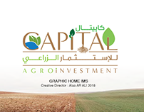 Capital Agro investment