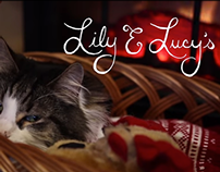 Lily & Lucy's Christmas Cookies - video