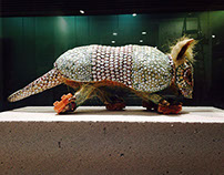 ARMADILLO Puk Lee