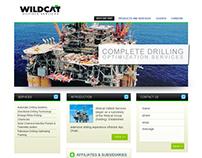Petroleum company website