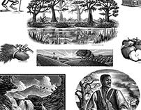 Steven Noble's Scratchboard Illustrations Collection 3