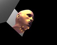 Human Blenderhead