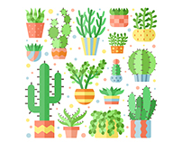 Succulents and cacti flat vector illustrations