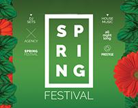 Spring Festival Flyer | Poster Template