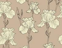 Flower pattern (iris)