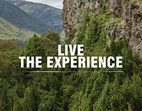 Live the Experience