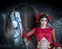 Amparo Pardal Flamenco Fashion (photography)