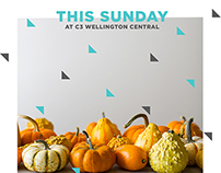 C3 Wellington Central Weekly Promos Nov '14